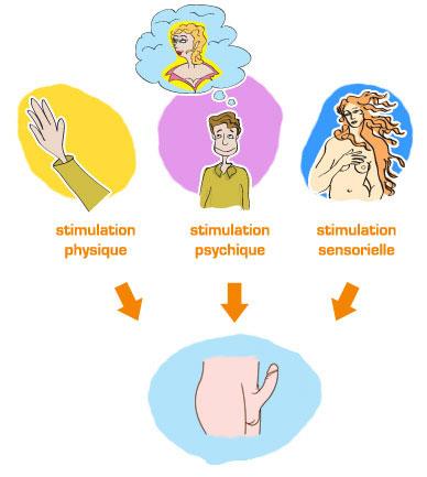 Différentes formes de stimulation